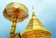 DOI SUTHEP AND THE GOLDEN CHEDI